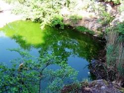 """Женевське озеро в дендропарку """"Софіївка"""" в місті Умань"""