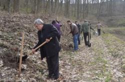Депутати облради посадили калину в Холодному Ярі